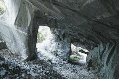 caveoolite